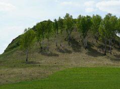 УК «Кузбассразрезуголь» поддержала открытие Регионального памятника природы