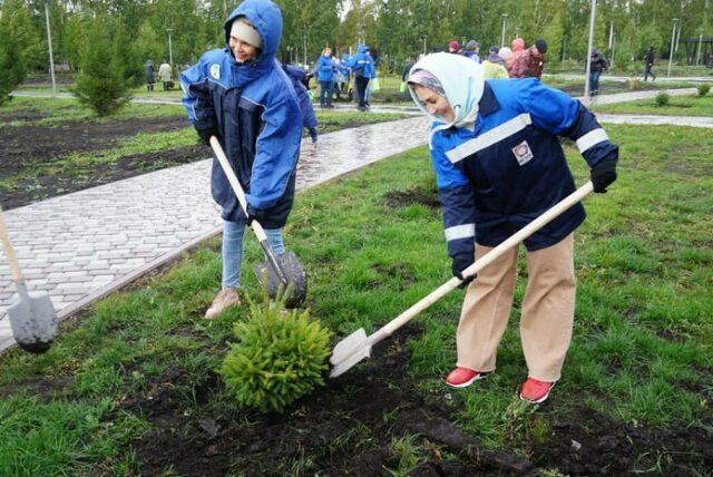 «Кузбассразрезуголь» озеленил парк в поселке Бачатский